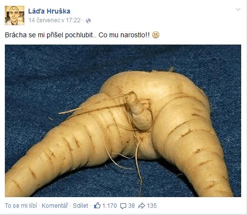 zdroj: Facebook, Láďa Hruška