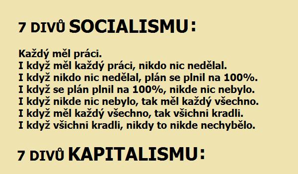 7 DIVU SOCIALNAHLED