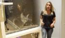 Vyhodil roztomilou kočičku své přítelkyně z okna, málem se z toho zbláznila!