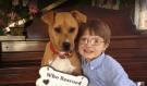 Rodina si myslela, že zachránila týrané štěně: Nikdy by je nenapadlo, že nakonec pejsek pomůže nejvíce jim!